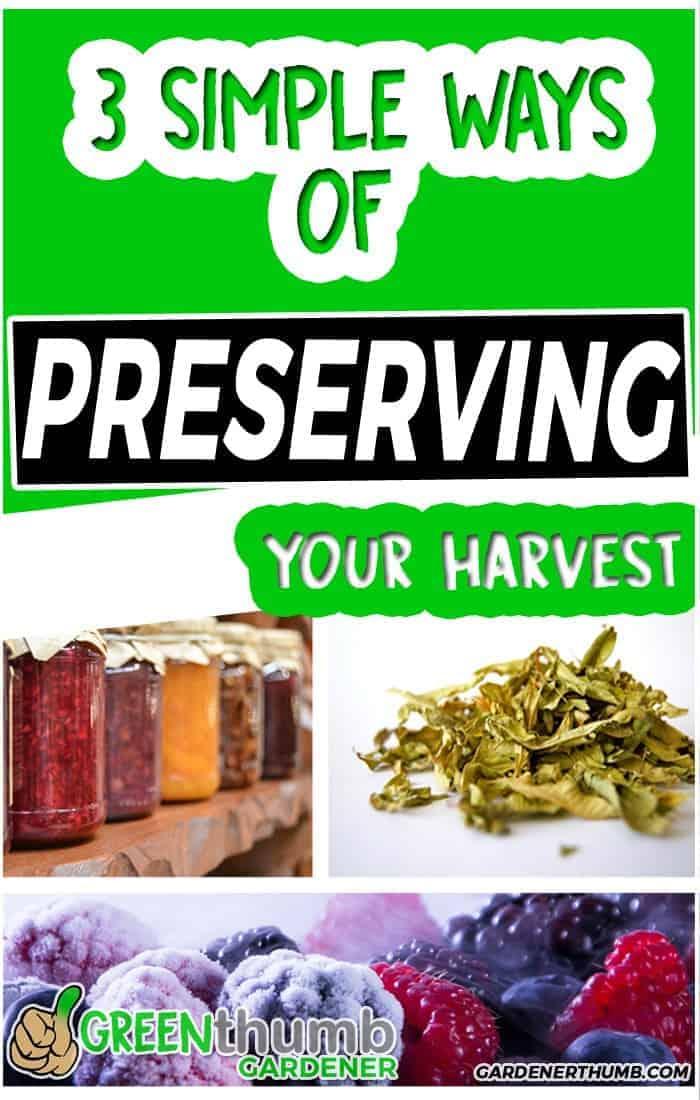 preserving harvest