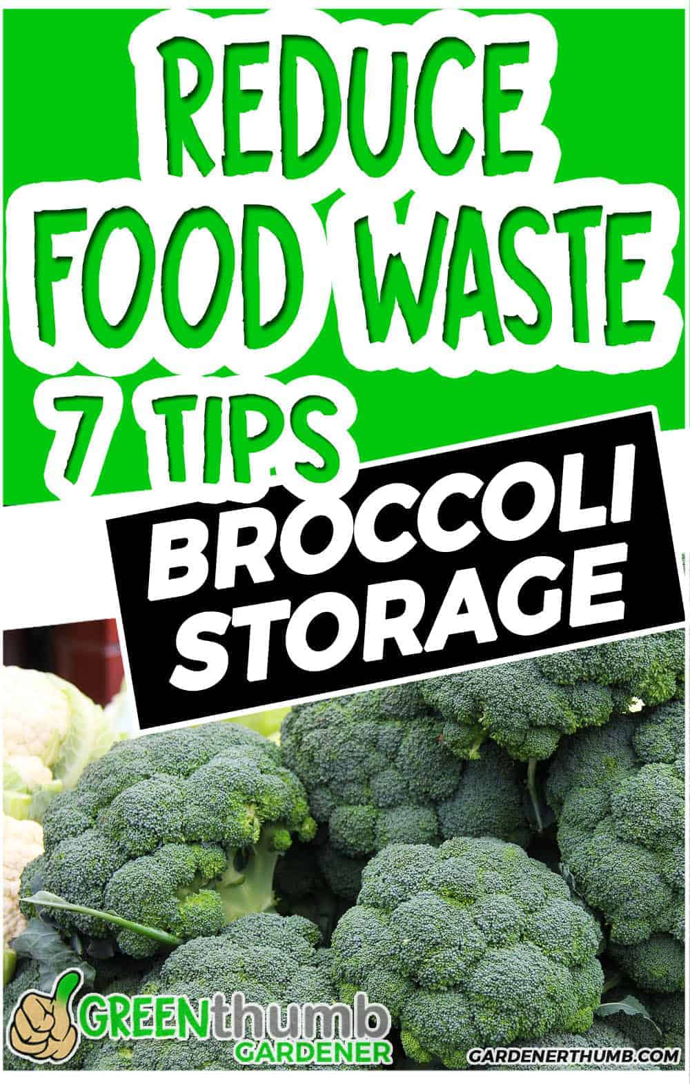 HOW LONG DOES BROCCOLI LASTs