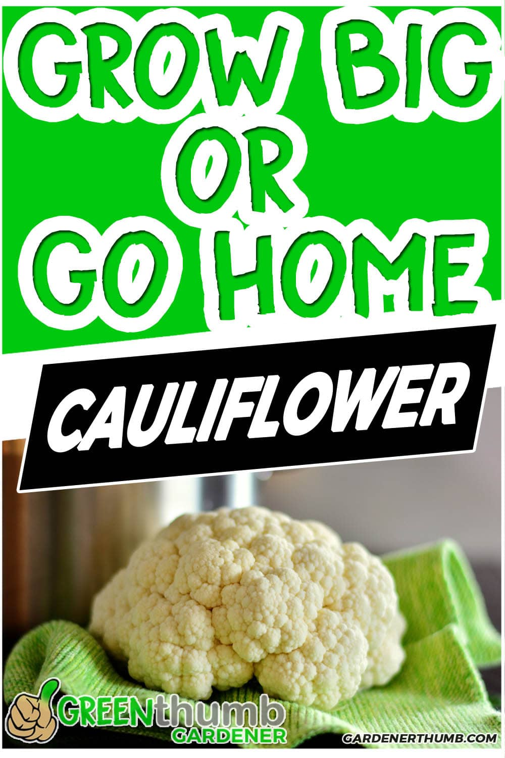 How To Grow Cauliflower plants