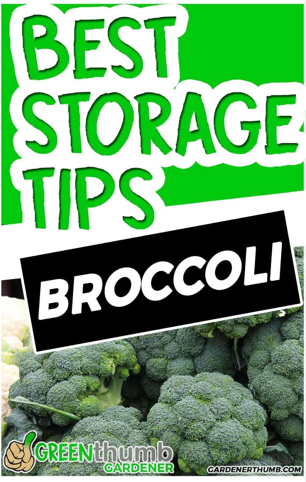 broccoli last tips