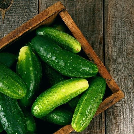 ashley cucumber