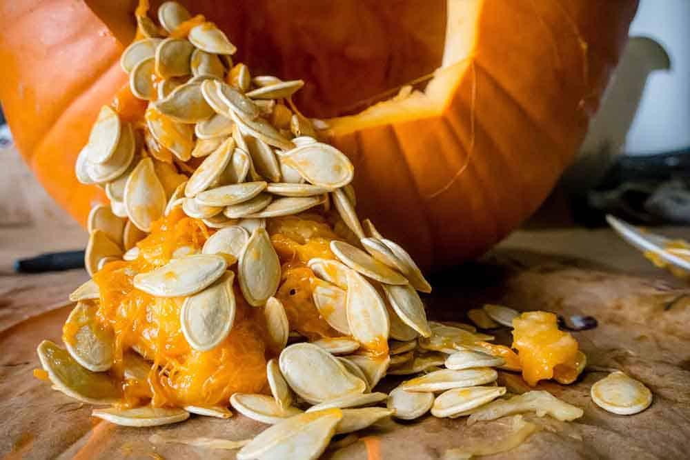 pumpkin_strings