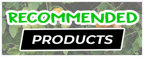 recommended-products