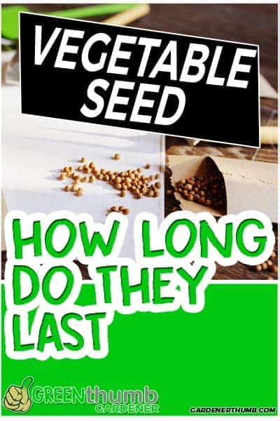 how long do vegetable seeds last