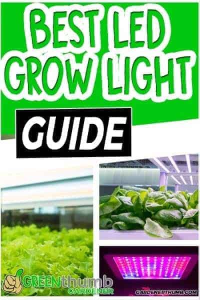 Best Led Grow Lights for Vegetables