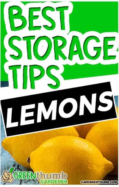how long do lemons last