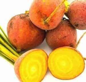 Burpee's Golden beets