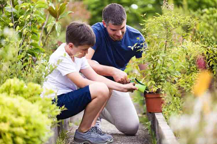 gardening gifts for dads