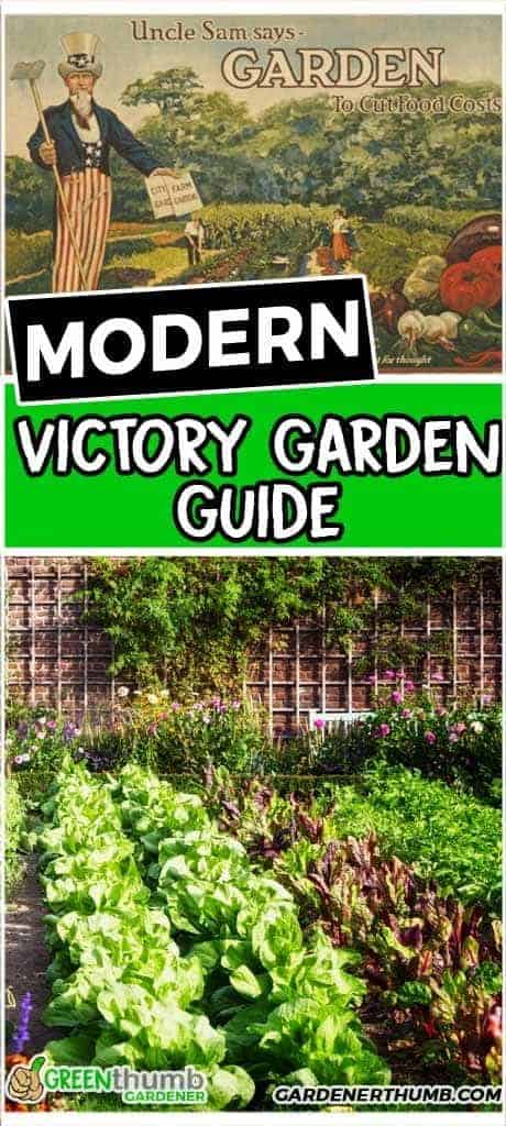 how to build a victory garden