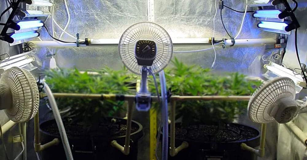 Best 4x4 grow tent reddit