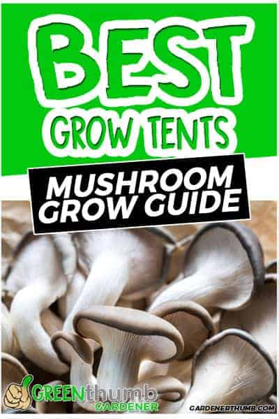 Best Grow Tents for Mushrooms