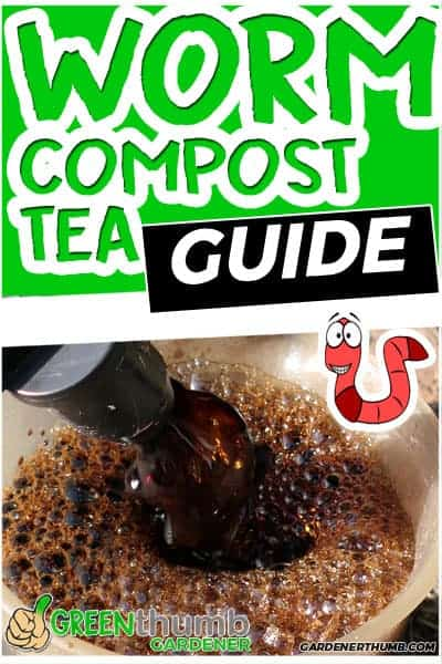 how to make worm tea