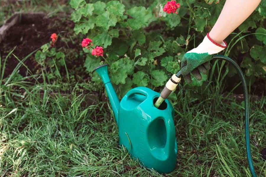 Best garden hose filter