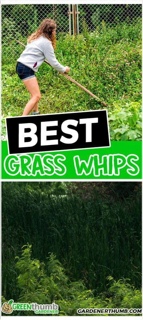 best grass whips