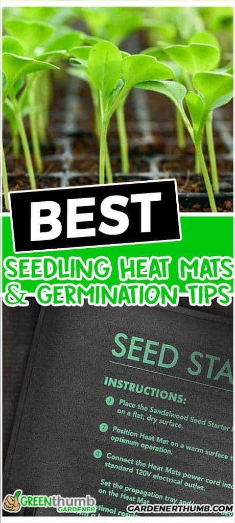 best seedling heat mats