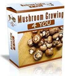 mushroom growing for you