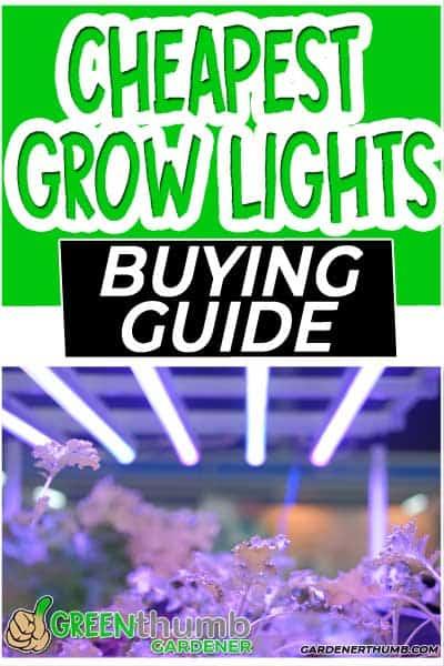 cheapest led grow lights