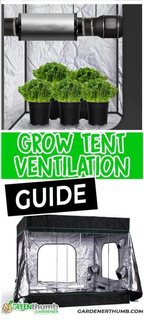 How to Set Up Grow Tent Ventilation