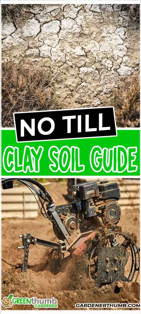 amend clay soil guide
