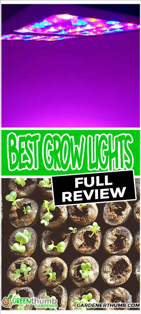 grow light gardening