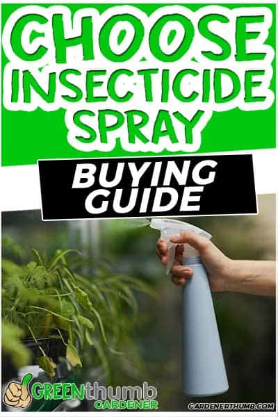 spray for insects