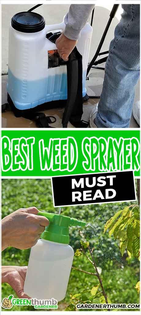 best weed sprayer