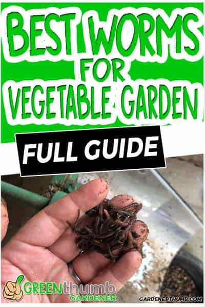 worms for vegetables