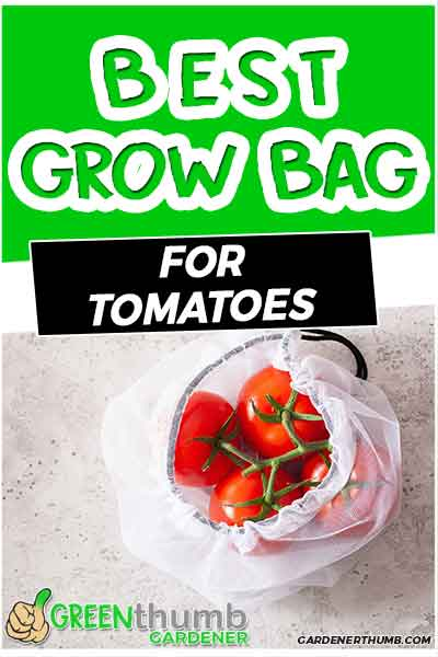 best size for grow bag