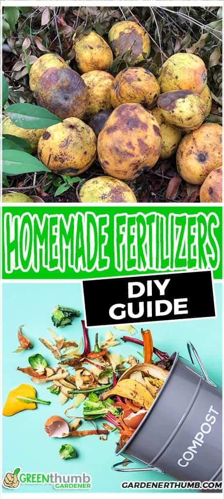 homemade fertilizers for your garden