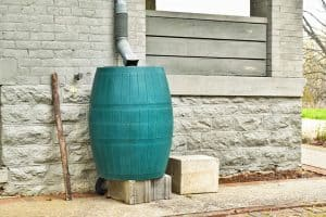 rain barrel featured image