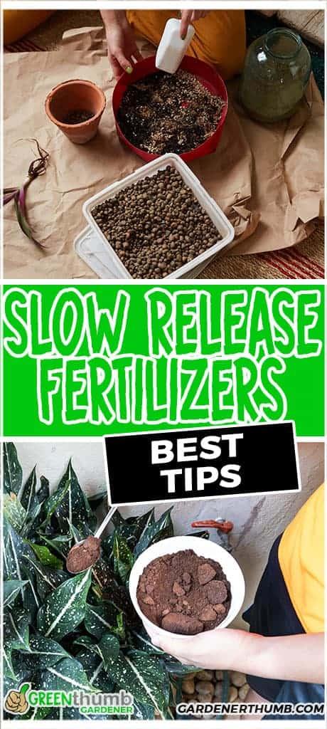 slow release fertilizer tips