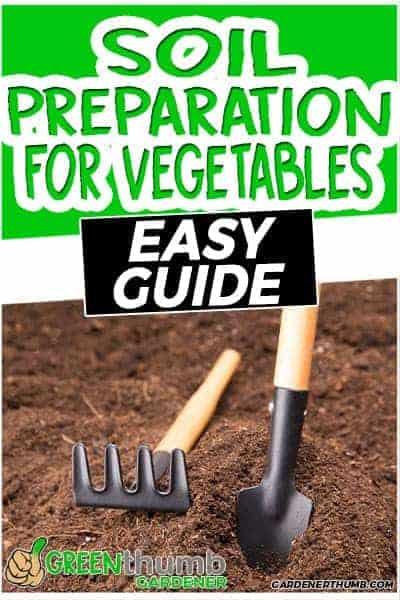 prepare oil for vegetables