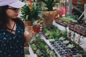 space saving vegetable garden