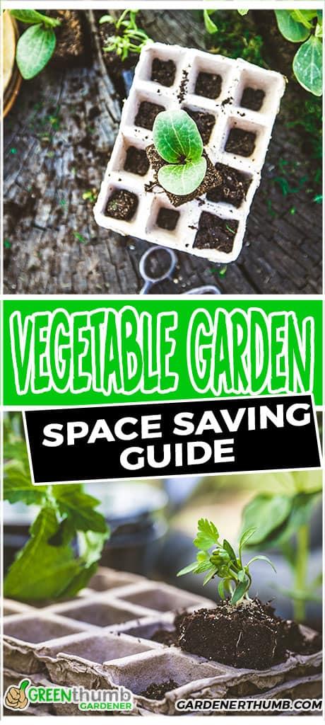 vegetable garden space saving guide