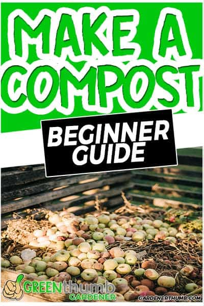 make a compost beginner guide