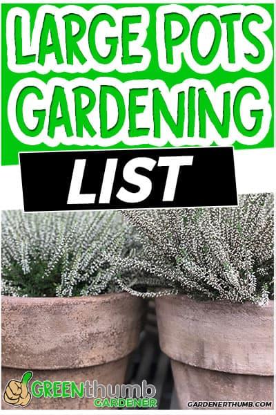 large pots gardening list