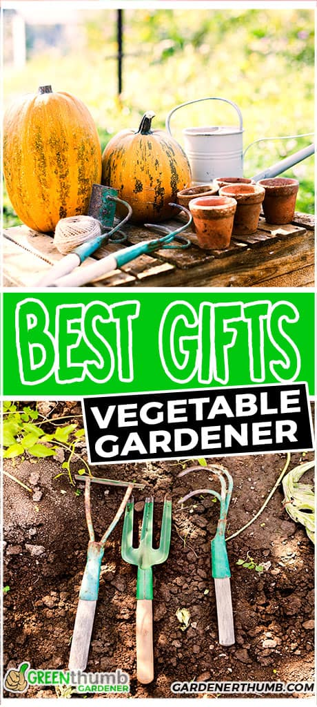 best gifts vegetable gardener