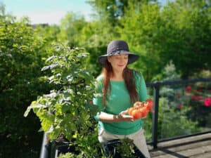 growing vegetables in balcony