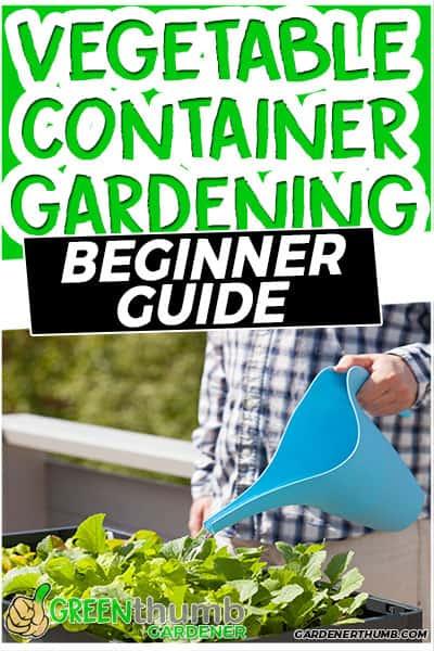 vegetable container gardening beginner gudie