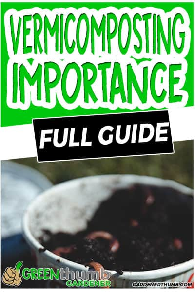vermicomposting importance full guide