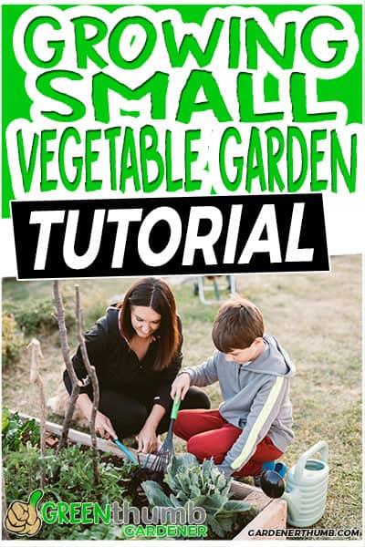growing small vegetable garden tutorial