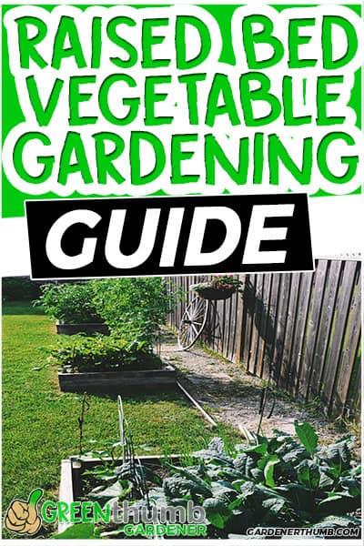 vegetable gardening fuide