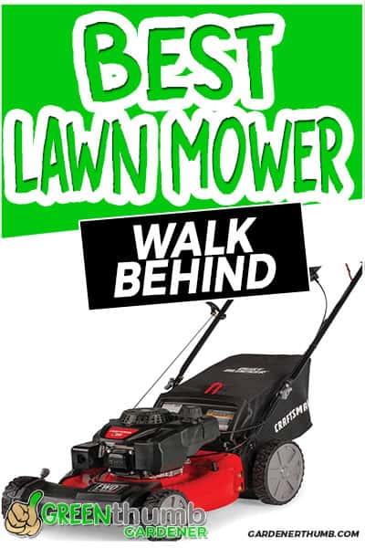 best lawn mower walk behind