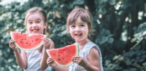 watermelon fertilizer