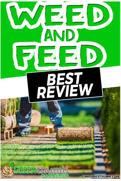weed and feed best review
