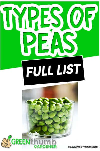 types of peas full list