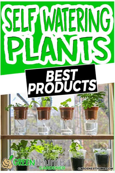 self watering plants best products