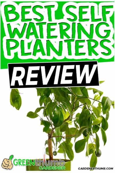 best self watering planters review