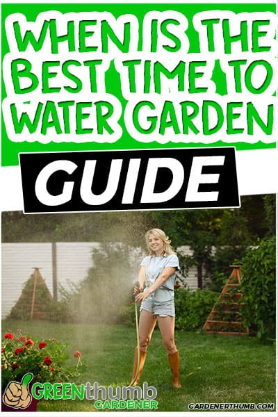 when is the best time ti water garden