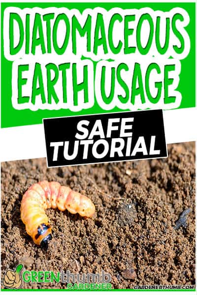 diatomaceous earth usage safe tutorial